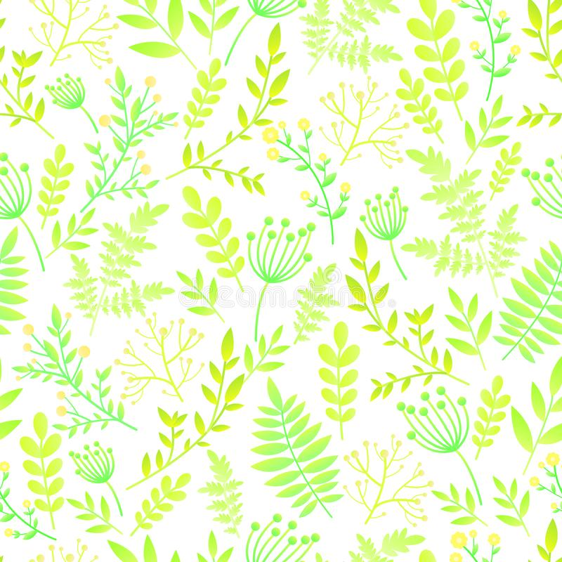 Seamless pattern with leafs and flowers. Botanical floral backdrop, gentle romantic, naive wild flowers, spring, summer time,. Nature in bloom. Isolated white vector illustration