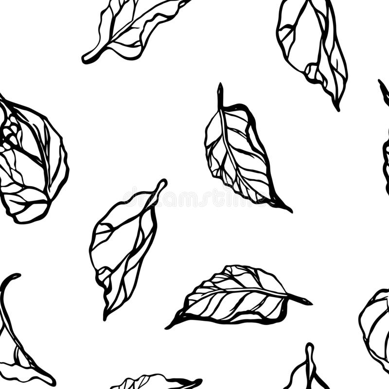 Seamless pattern with leaves. Floral ornament. White background. royalty free illustration