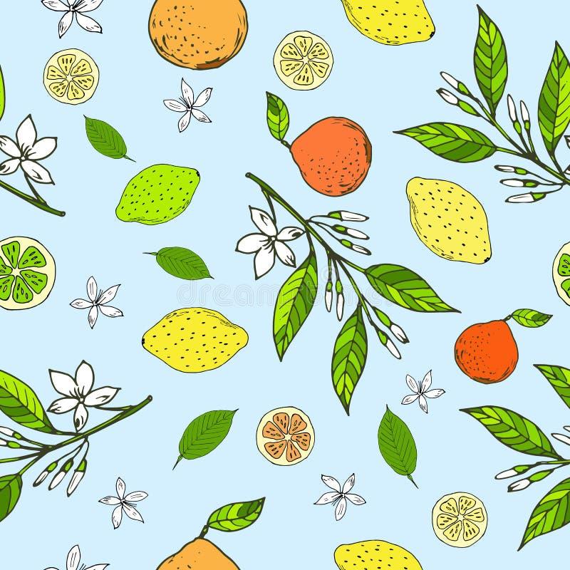 Seamless pattern with lemons, bitter oranges, limes. Hand drawn seamless pattern with yellow lemons, bitter oranges, limes, leaves and flowers on the blue vector illustration