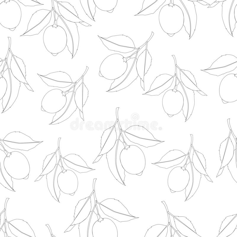 Seamless pattern with lemons. Black Line drawing isolated on white background. Fresh Fruits with leaves. Summer design. Vector. Illustration royalty free illustration