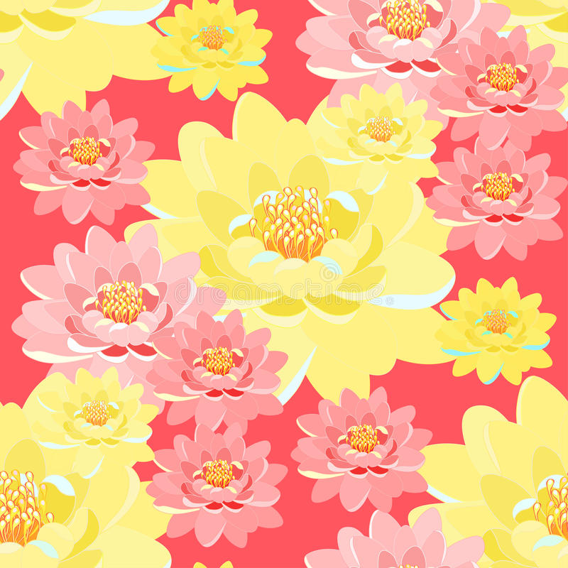 Seamless pattern lotus flower pink, yellow, close up on pink. Background vector illustration stock illustration