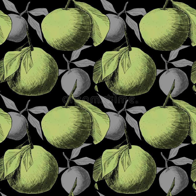 Seamless pattern: mandarins or apples, unique pencil drawings of fruits combined into beautiful compositions. Green on black background with grey silhouettes vector illustration