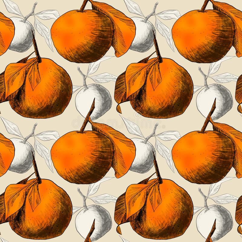 Seamless pattern: mandarins or apples, unique pencil drawings of fruits combined into beautiful compositions. Orange on beige background with grey silhouettes vector illustration