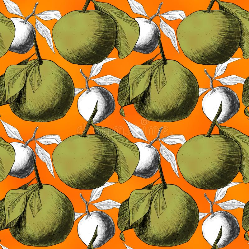 Seamless pattern: mandarins or apples, unique pencil drawings of fruits combined into beautiful compositions. Green on orange background with grey silhouettes stock illustration