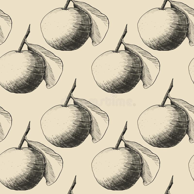 Seamless pattern: mandarins or apples, unique pencil drawings of fruits combined into beautiful compositions. Transparent on beige background vector illustration