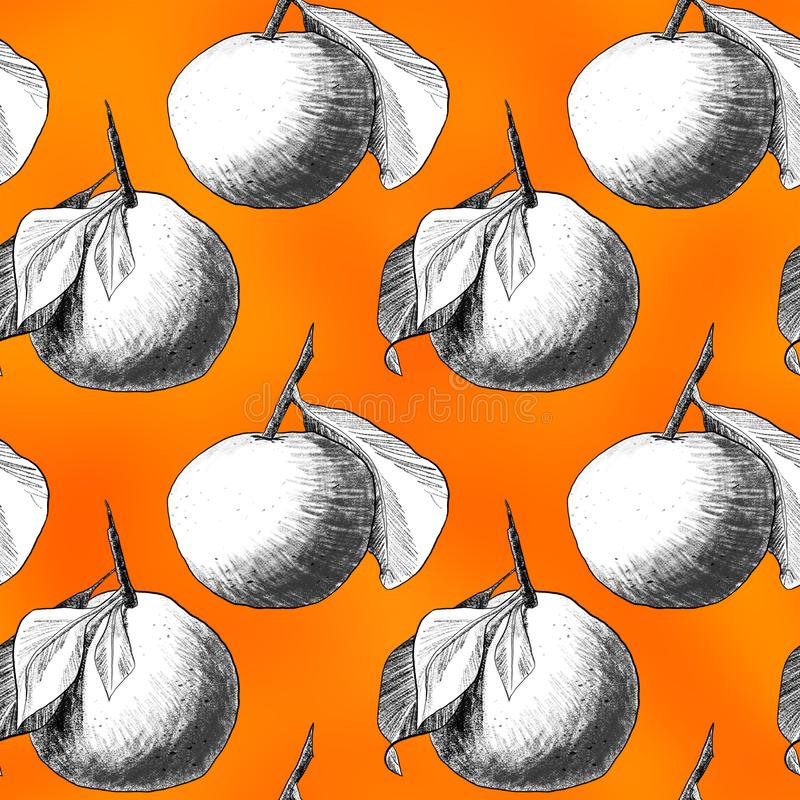 Seamless pattern: mandarins or apples, unique pencil drawings of fruits combined into beautiful compositions. White on orange background vector illustration