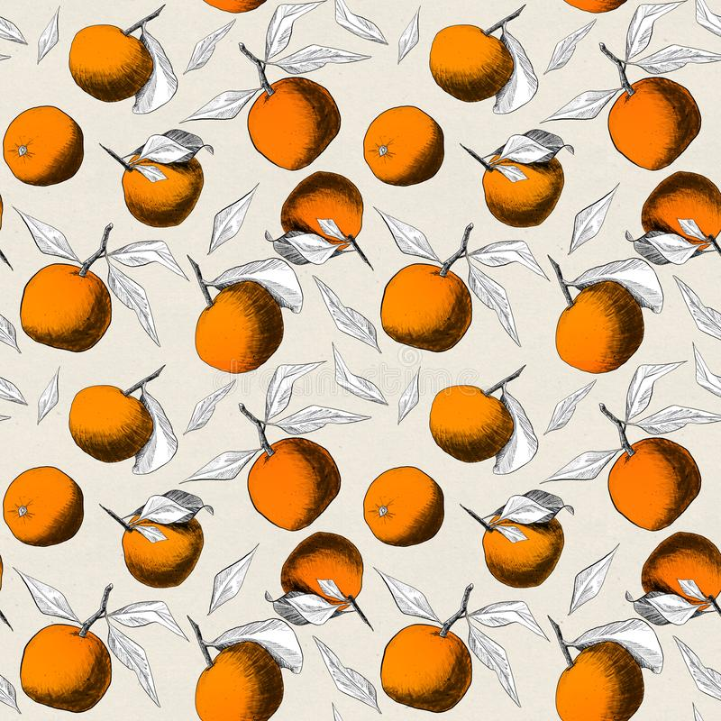 Seamless pattern: mandarins or apples, unique pencil drawings of fruits and leafs combined into beautiful compositions. Orange on beige background with royalty free illustration