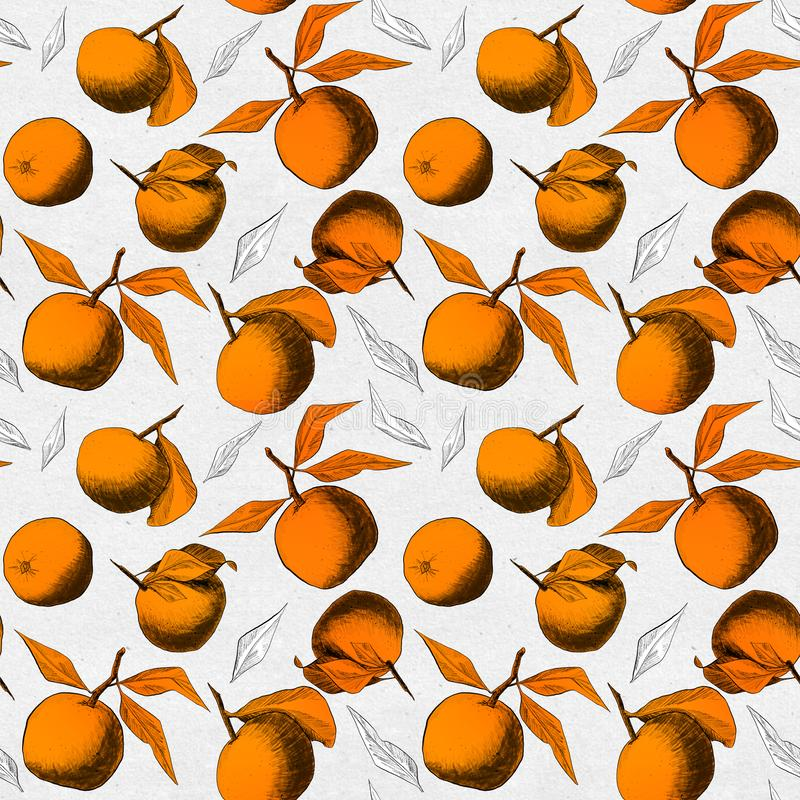 Seamless pattern: mandarins or apples, unique pencil drawings of fruits and leafs combined into beautiful compositions. Orange on paper textured background royalty free illustration