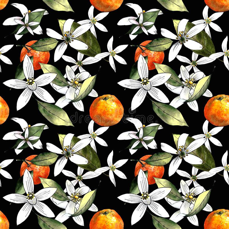 Seamless pattern with mandarins and leaves and flowers on black background. Drawing markers. Seamless pattern with mandarins and leaves. Hand draw vector illustration