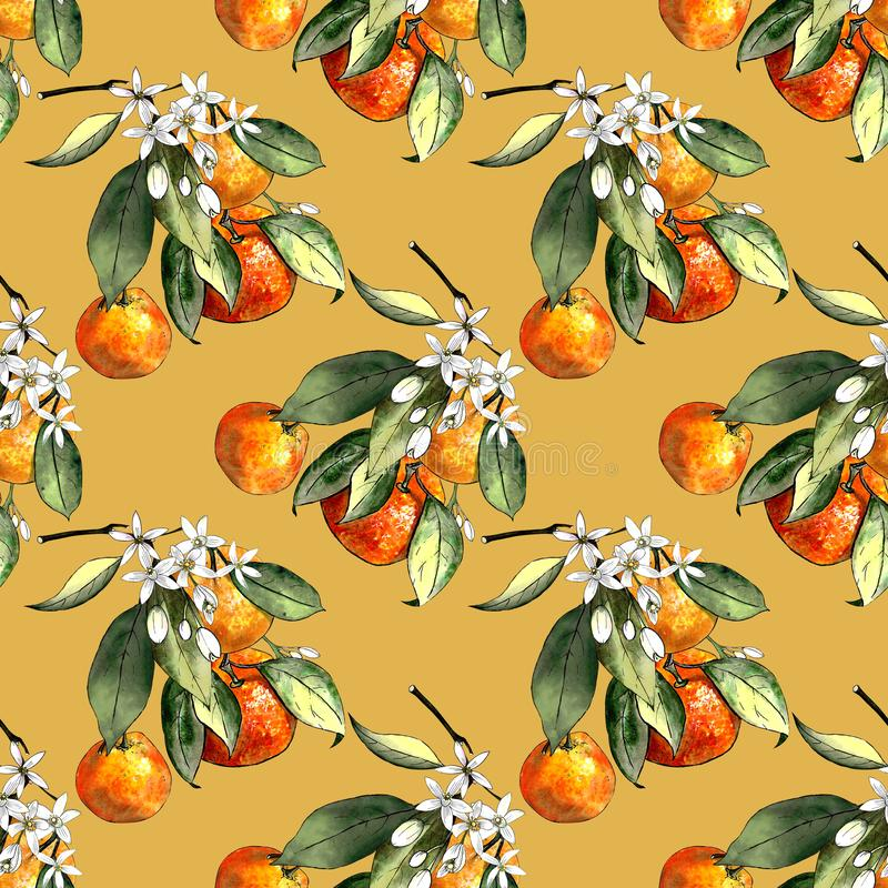 Seamless pattern with mandarins and leaves and flowers on yellow background. Drawing markers. Seamless pattern with mandarins and leaves. Hand draw royalty free illustration