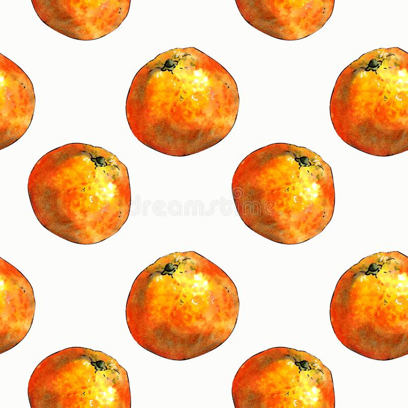 Seamless pattern with mandarins and leaves on white background. Drawing markers. Seamless pattern with mandarins and leaves. Hand draw vector illustration