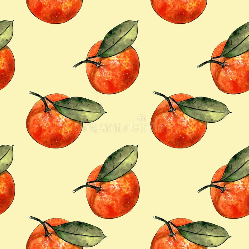 Seamless pattern with mandarins and leaves on yellow background. Drawing markers. Seamless pattern with mandarins and leaves. Hand draw royalty free illustration