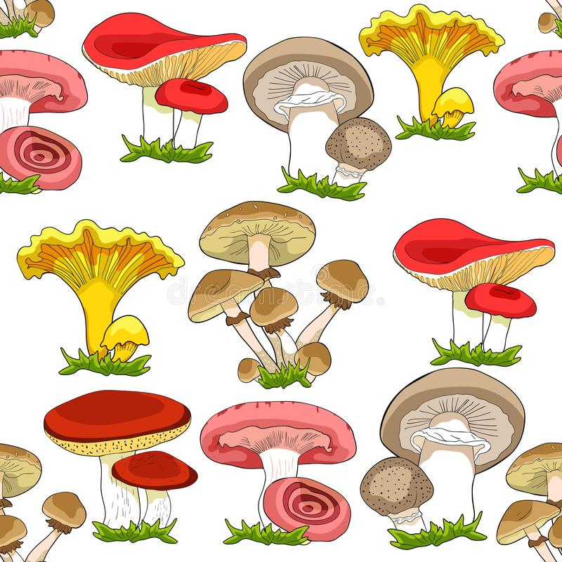 Seamless pattern mushrooms russula, chanterelle, champignon, gr. Easers, honey agaric, freckle. vector illustration stock illustration