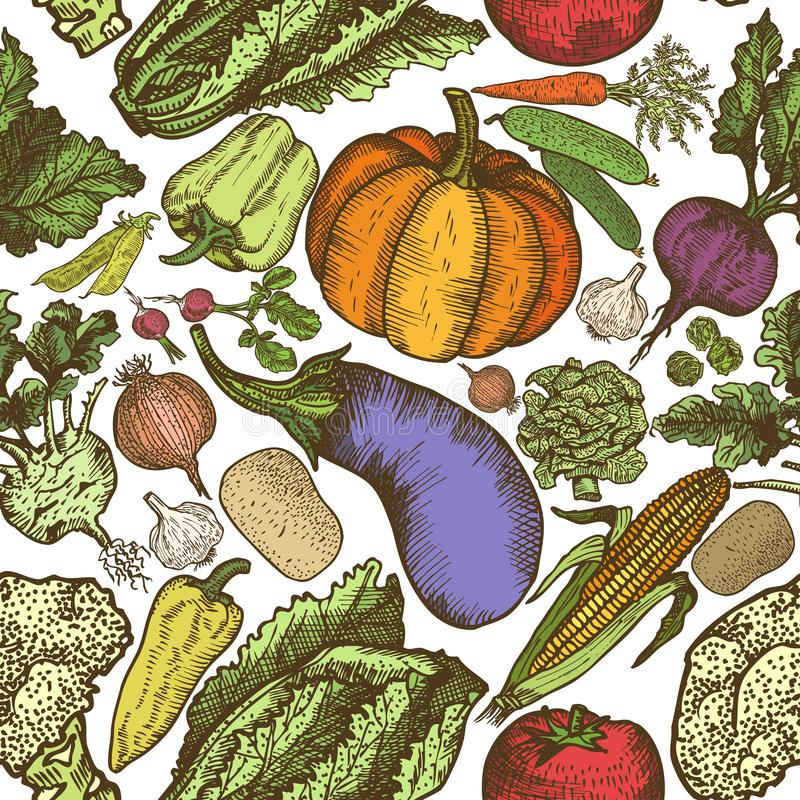Seamless pattern of natural vegetables hand drawn. Design template - Vector stock photos