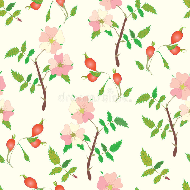 Download Seamless Pattern With Officinal Brier Stock Vector - Image: 17236037