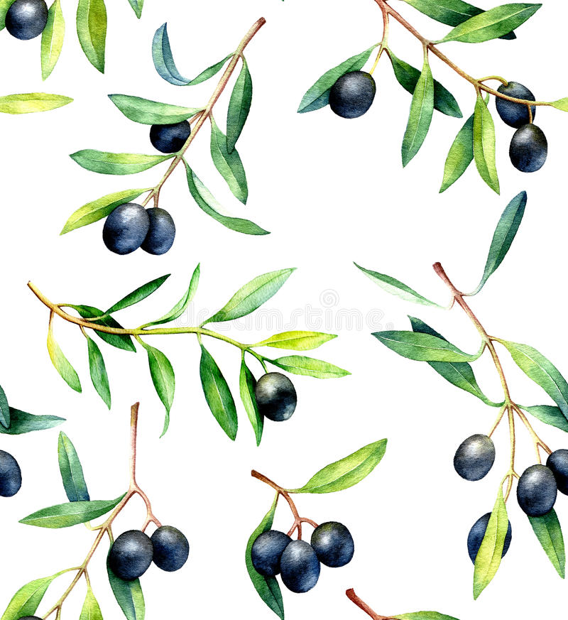 Seamless pattern with olive branches. Hand drawn watercolor illustration. royalty free illustration