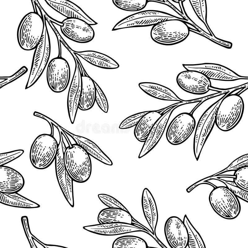 Seamless pattern Olives on branch with leaves. vector illustration