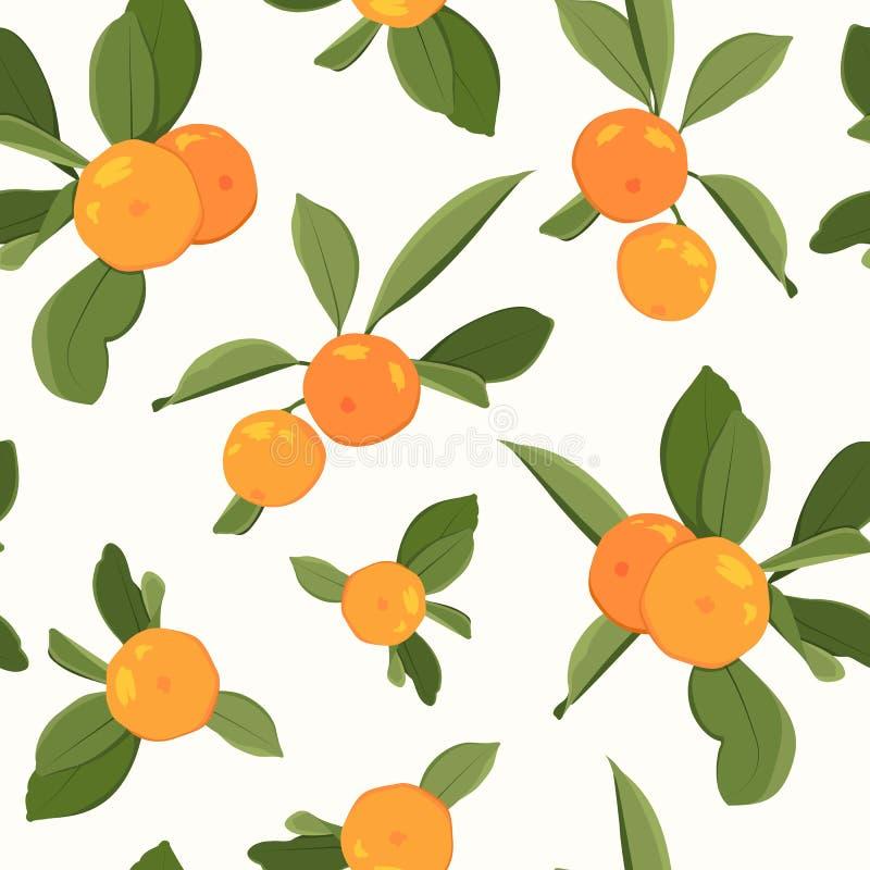 Seamless pattern with orange mandarin. Tangerine and leaves on white background. Vector illustration stock illustration