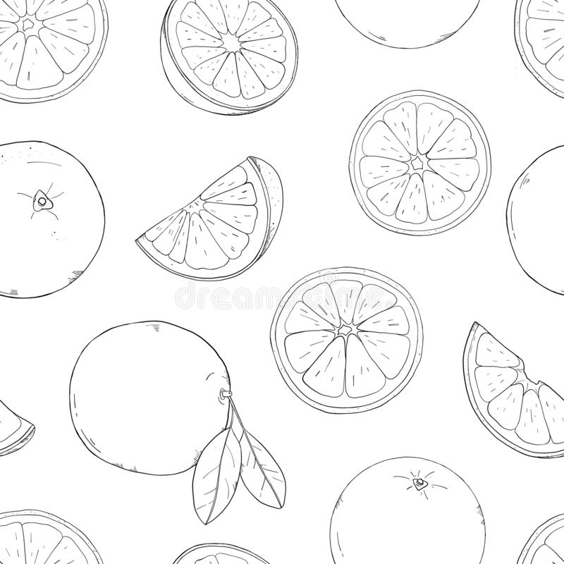 Seamless pattern with oranges. Drawing with hands. Colorless vector illustration in sketch style. Seamless pattern with oranges. Silhouettes of oranges, pieces royalty free illustration