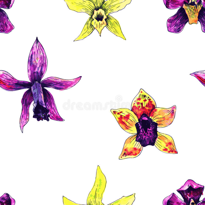 Seamless pattern with orchids stock illustration