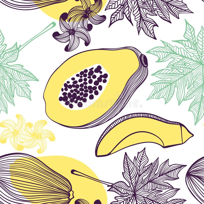 Seamless pattern of papaya. Fruit, leaf, slice, flower of tropical papaya. Vector hand drawn illustration set in modern trendy. Seamless pattern of tropical stock illustration