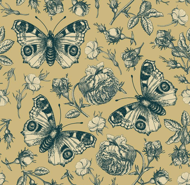 Seamless pattern peacock butterfly Realistic isolated flowers Vintage background Rose Wallpaper Drawing engraving agrostemma. Seamless pattern. Beautiful pink vector illustration