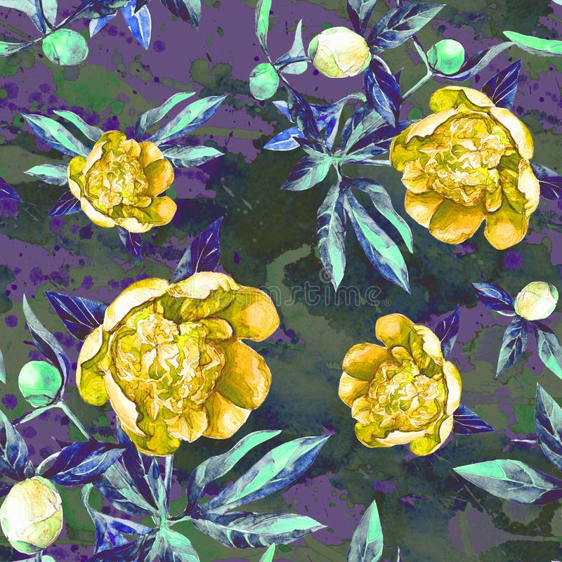 Seamless pattern of peonies in watercolor. royalty free stock photo