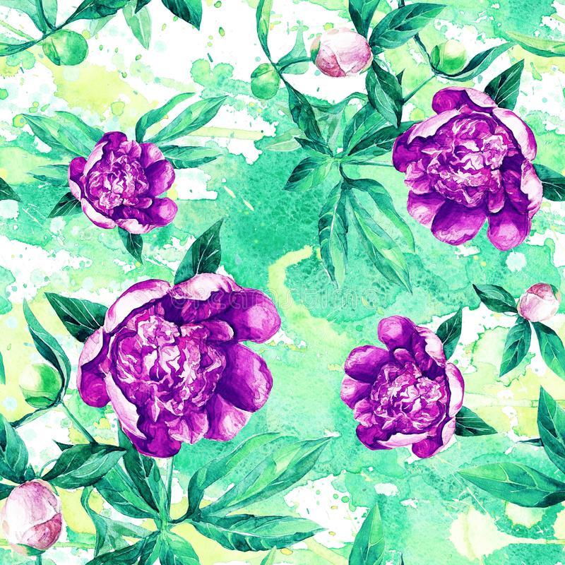 Seamless pattern of peonies in watercolor. royalty free stock photos