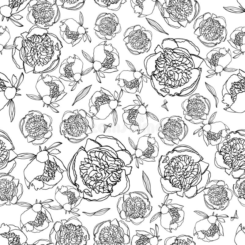 Seamless pattern with peony flowers, nature floral background vector illustration