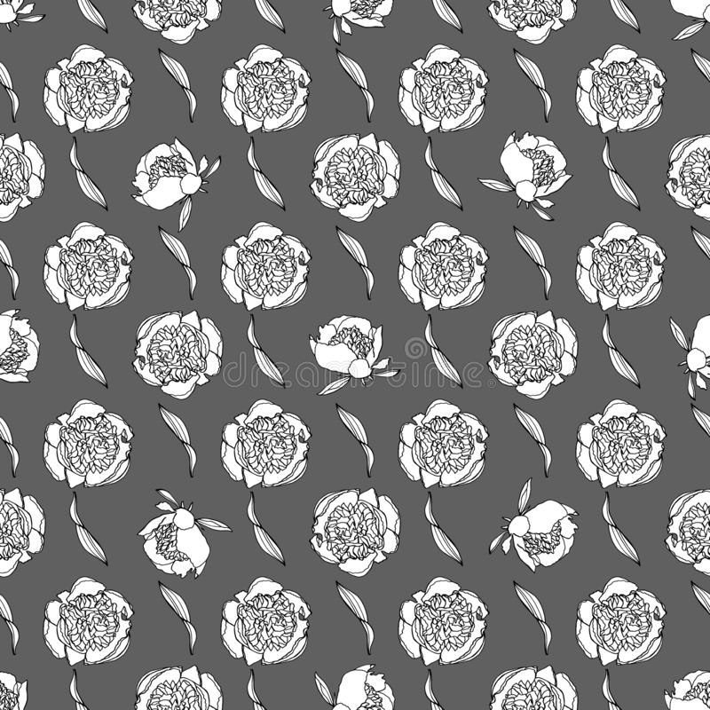 Seamless pattern with peony flowers, nature floral background royalty free illustration