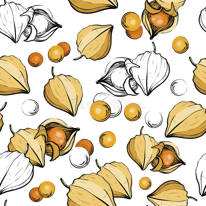 Seamless pattern with physalis berries. stock illustration