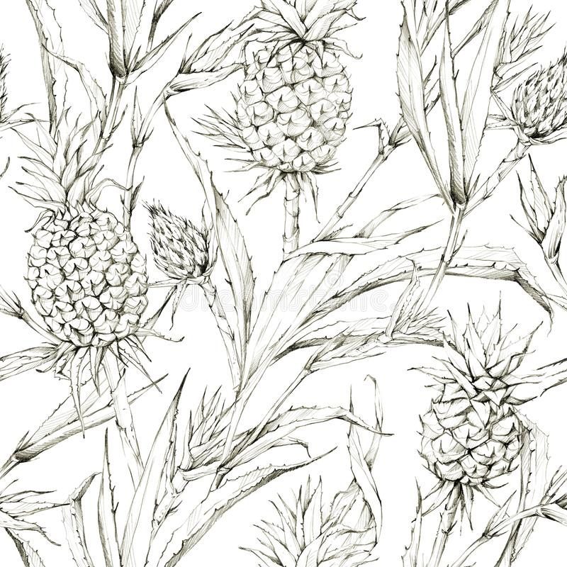 Seamless pattern with pineapples and leaves. Tropical summer graphic illustration. Botanical texture in beige shades. Monochrome nature design. Can be used for royalty free stock image
