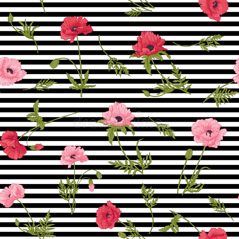 Seamless pattern with pink and red poppy flowers in botanical st royalty free illustration