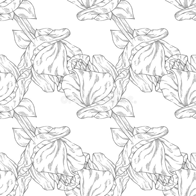 Seamless pattern. Plant in blossom, branch with flower ink sketch. Template for a banner, notebook, invitation, color book. Seamless pattern. Plant in blossom royalty free illustration