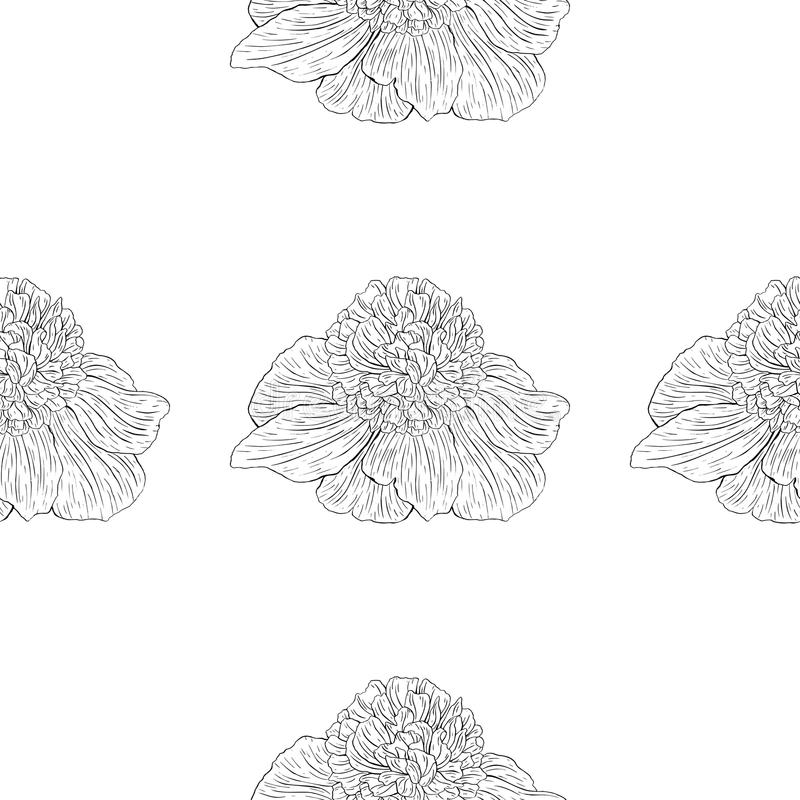 Seamless pattern. Plant in blossom, branch with flower ink sketch. Template for a banner, notebook, invitation, color book. Seamless pattern. Plant in blossom stock illustration