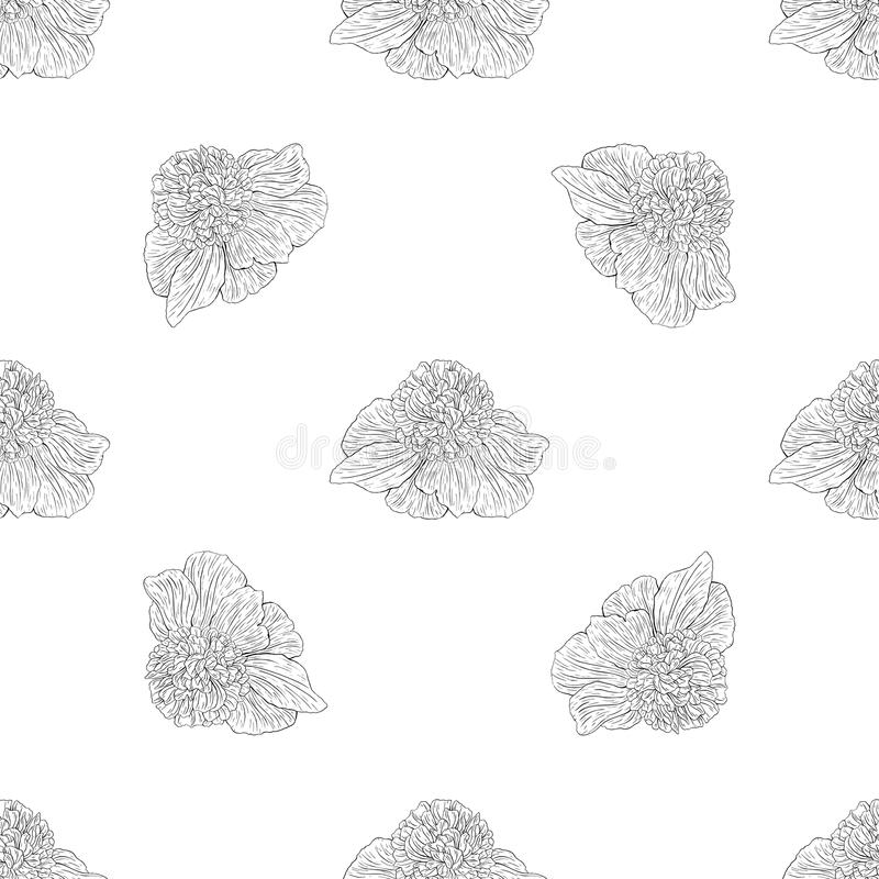 Seamless pattern. Plant in blossom, branch with flower ink sketch. Template for a banner, notebook, invitation, color book. Seamless pattern. Plant in blossom vector illustration