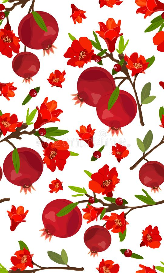 Seamless pattern pomegranate fruits with flower on white background, Fresh organic food, Red ruby fruits pattern. stock illustration