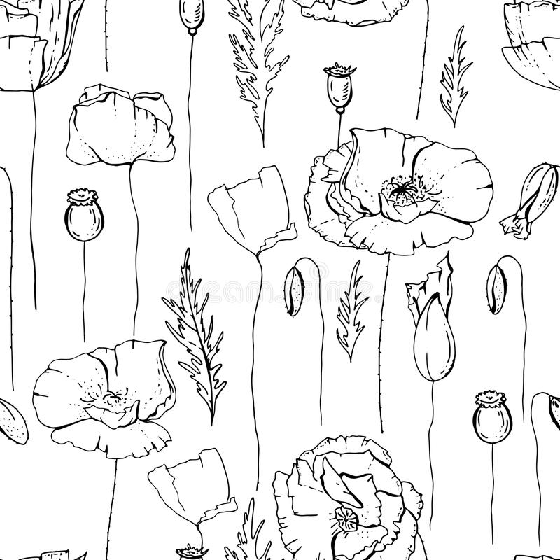 Seamless pattern with poppies. Black and white. royalty free illustration