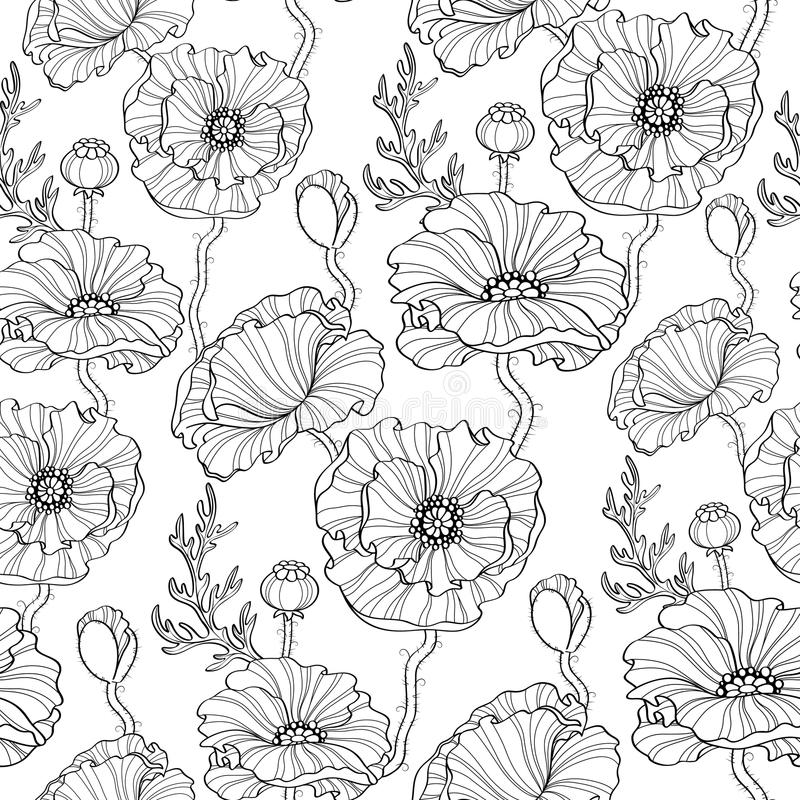 Seamless pattern with poppy flowers. Floral background. Black and white illustration vector illustration