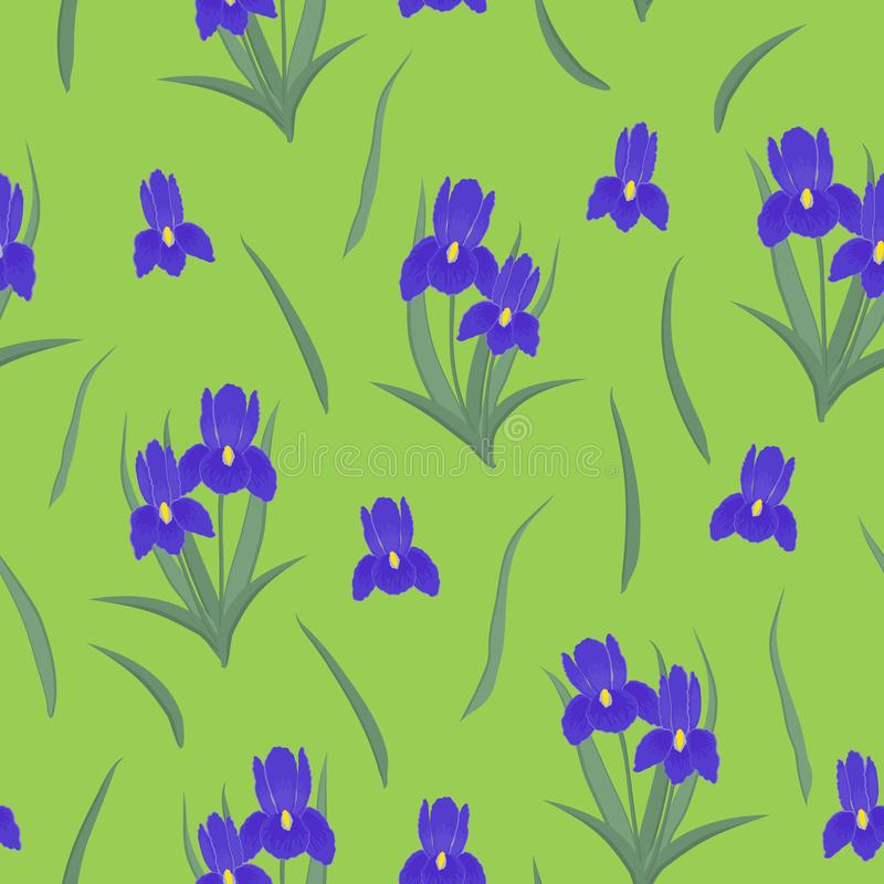 Seamless pattern with purple irises and leaves on a green background stock illustration