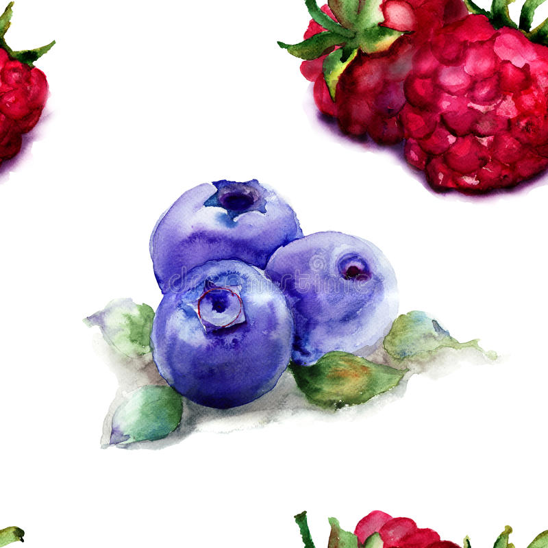 Seamless pattern with Raspberry and Blueberries. Watercolor illustration vector illustration