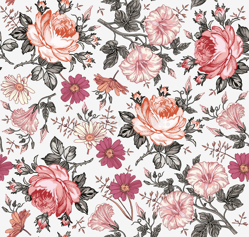 Seamless pattern. Realistic isolated flowers. Vintage background. Chamomile Rose Petunia wildflowers Drawing engraving Vector. Seamless pattern. Beautiful pink stock illustration