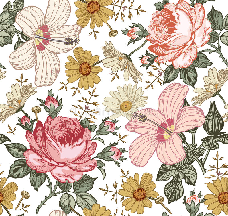 Seamless pattern. Realistic isolated flowers. Vintage background. Chamomile Rose hibiscus mallow. Wallpaper. Drawing engraving. Seamless pattern. Beautiful pink royalty free illustration