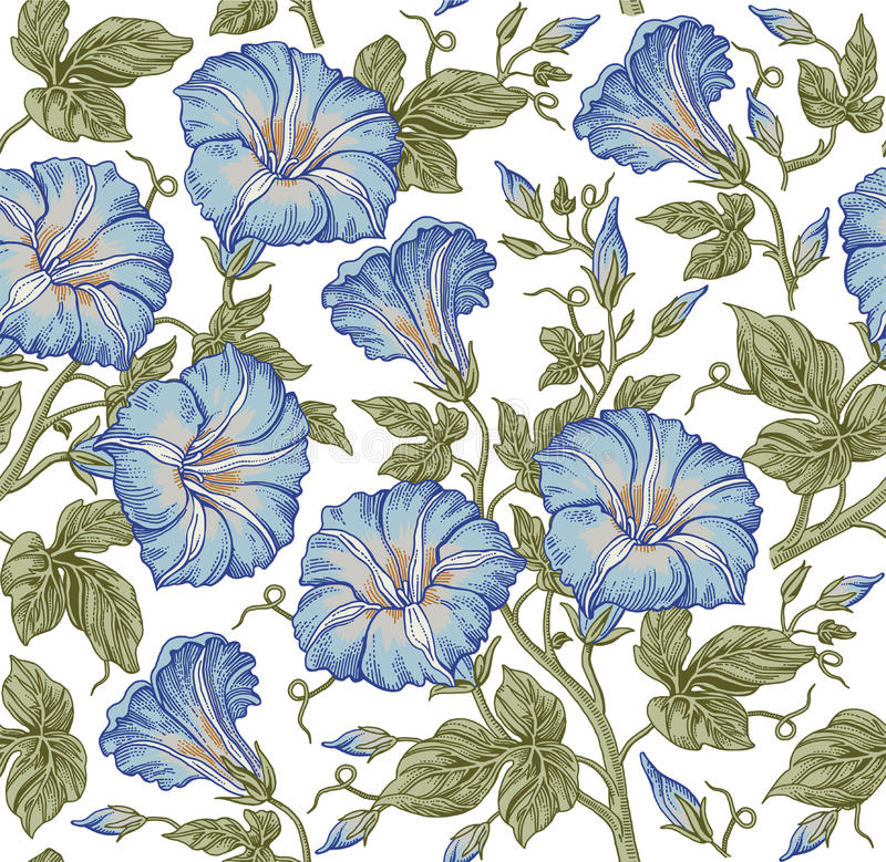 Seamless pattern. Realistic isolated flowers. Vintage baroque background. Petunia. Wallpaper. Drawing engraving. Vector. Seamless pattern. Beautiful blue stock illustration