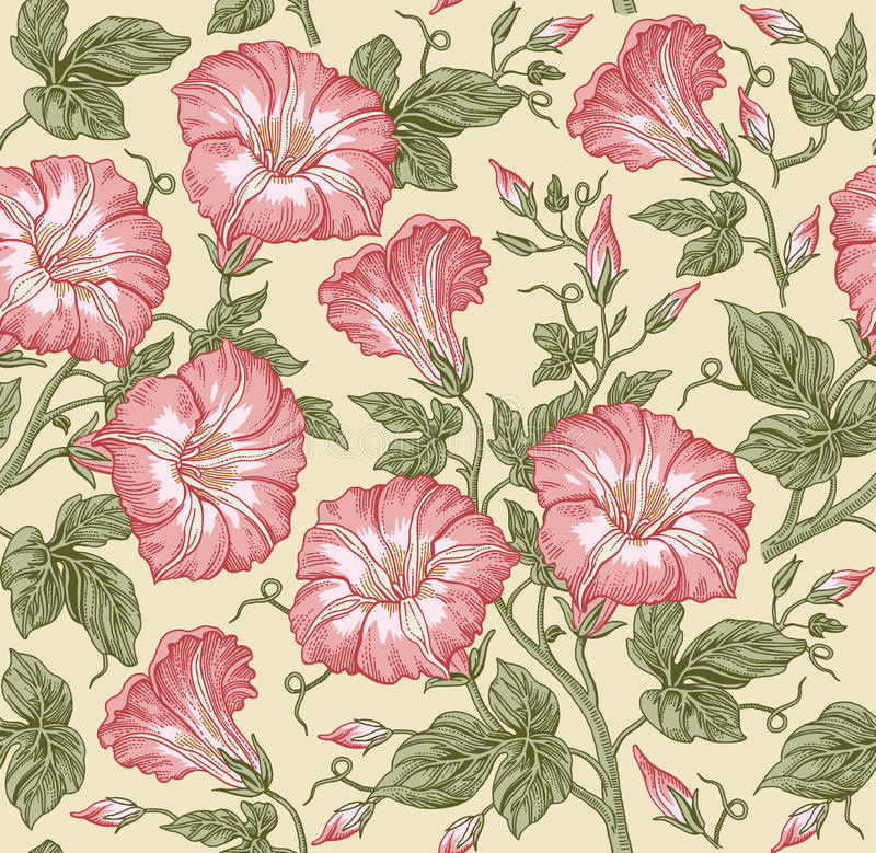 Seamless pattern. Realistic isolated flowers. Vintage baroque background. Petunia. Wallpaper. Drawing engraving. Vector. Seamless pattern. Beautiful pink stock illustration
