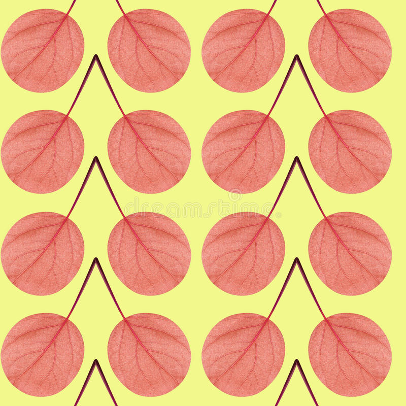 Seamless pattern of red leaves stock images