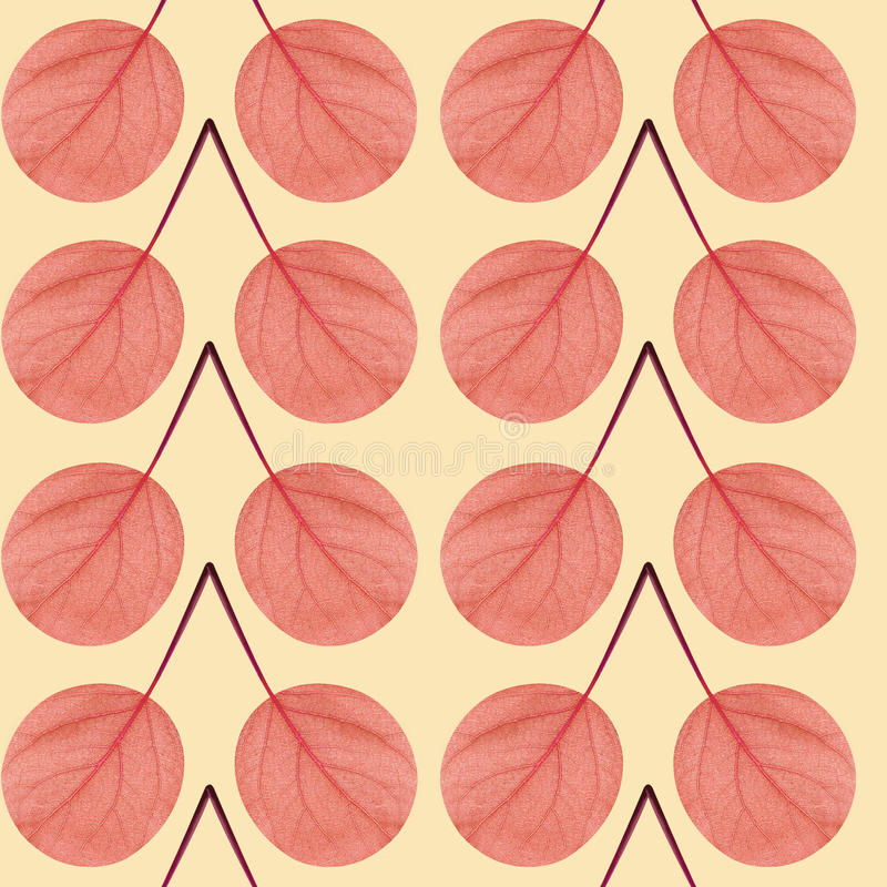 Seamless pattern of red leaves royalty free stock photo