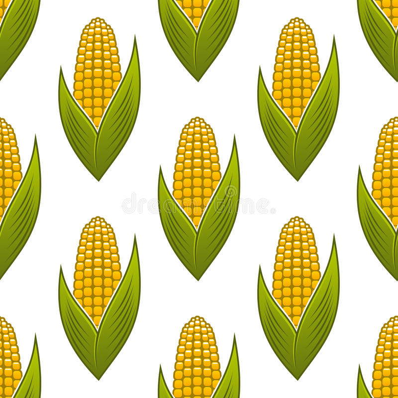 Download Seamless Pattern Of Ripe Golden Corn On The Cob Stock Vector - Image: 39580007