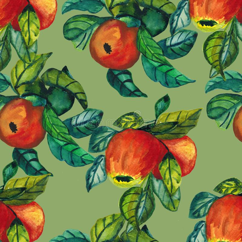 Seamless pattern with ripe red apples.Watercolor of a Apple tree with red fruit. Botanical illustration of autumn royalty free illustration