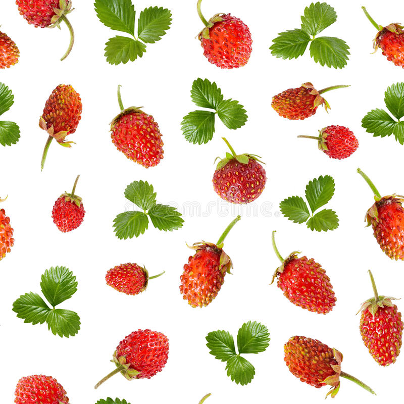 Seamless pattern of ripe wild strawberries and leaves royalty free stock photography